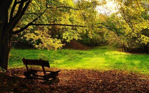 Peaceful Sceneries Wallpapers 9